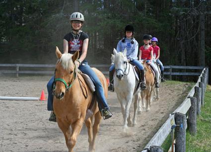 Horseback riding lessons california