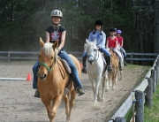Horseback riding lessons california