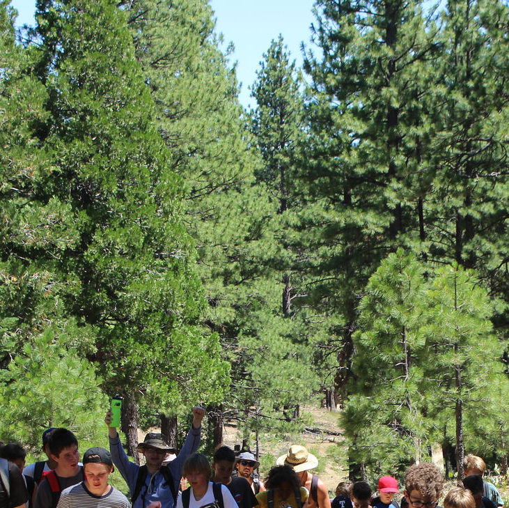 Activities Mountain Meadow Ranch Youth Summer Camp